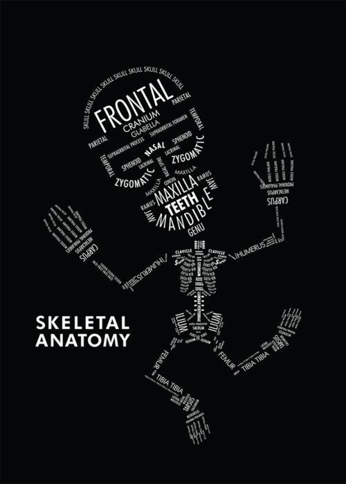 So Cute I Love Anatomy Art Sayingsother Stuff Pinterest