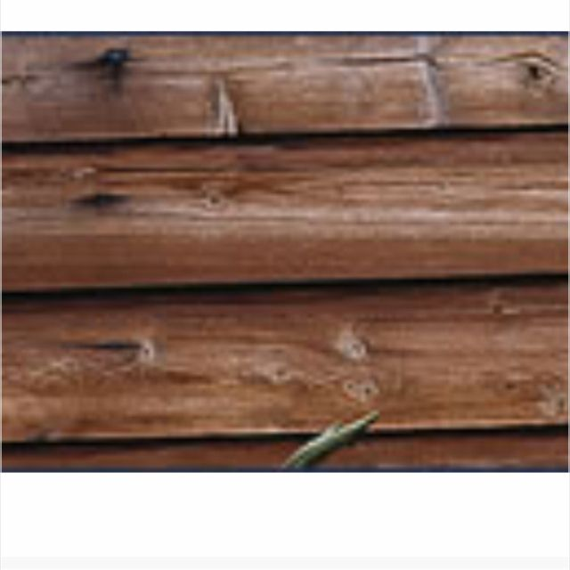 Vinyl siding that looks like wood i want this home for Exterior siding that looks like wood