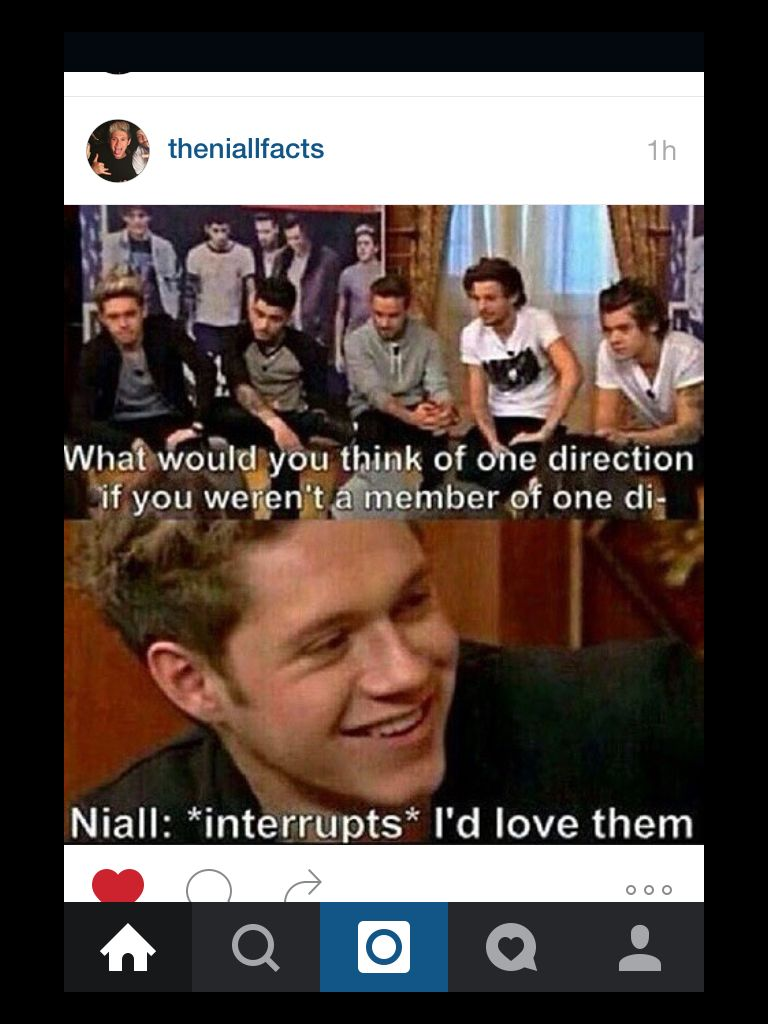 I D Love Them Biggest Fan Of 1d Niall Horan One Direction Photos Funny Quotes One Di