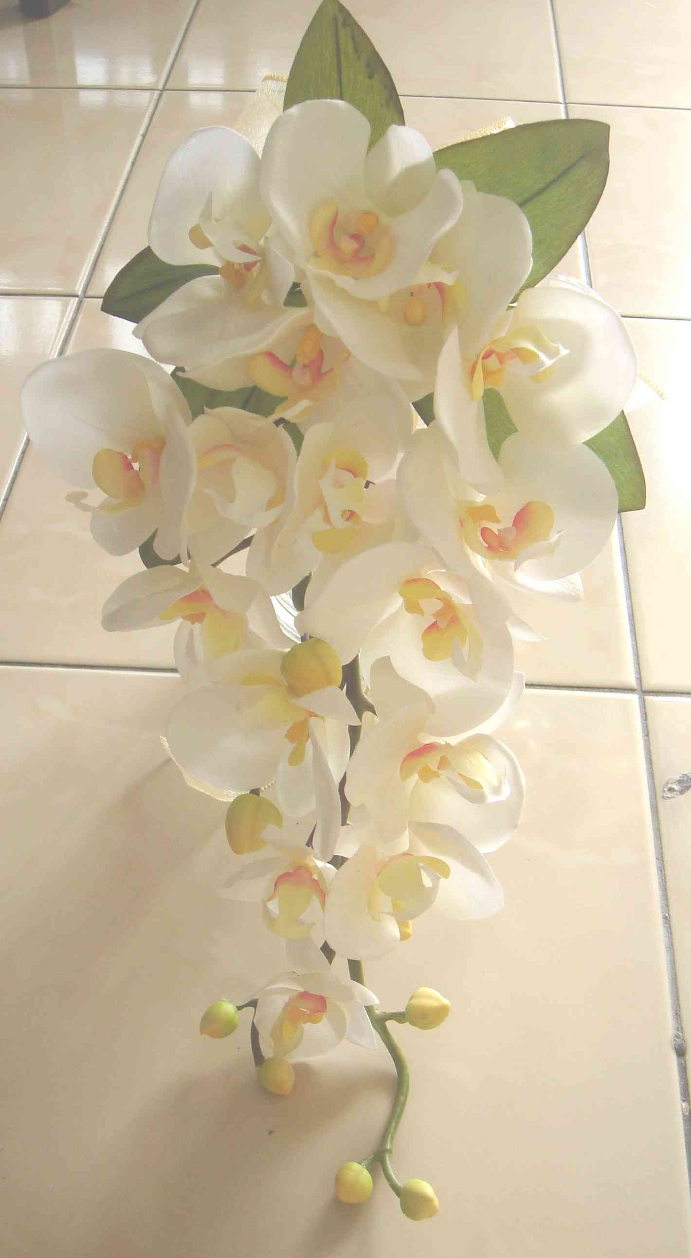 Orchid Wedding Flowers So Pretty Wedding Flowers Pinterest