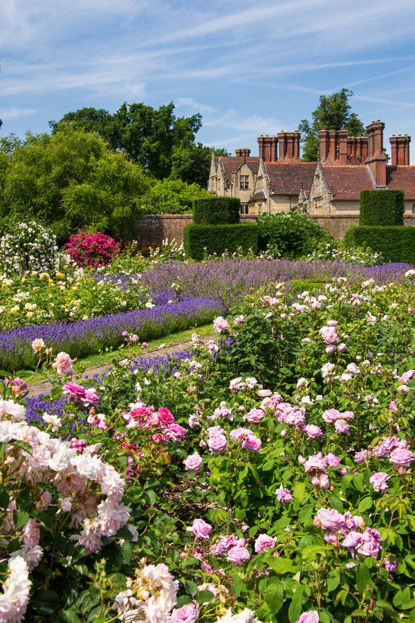 English Rose Garden Beautiful gardens, Garden on a hill