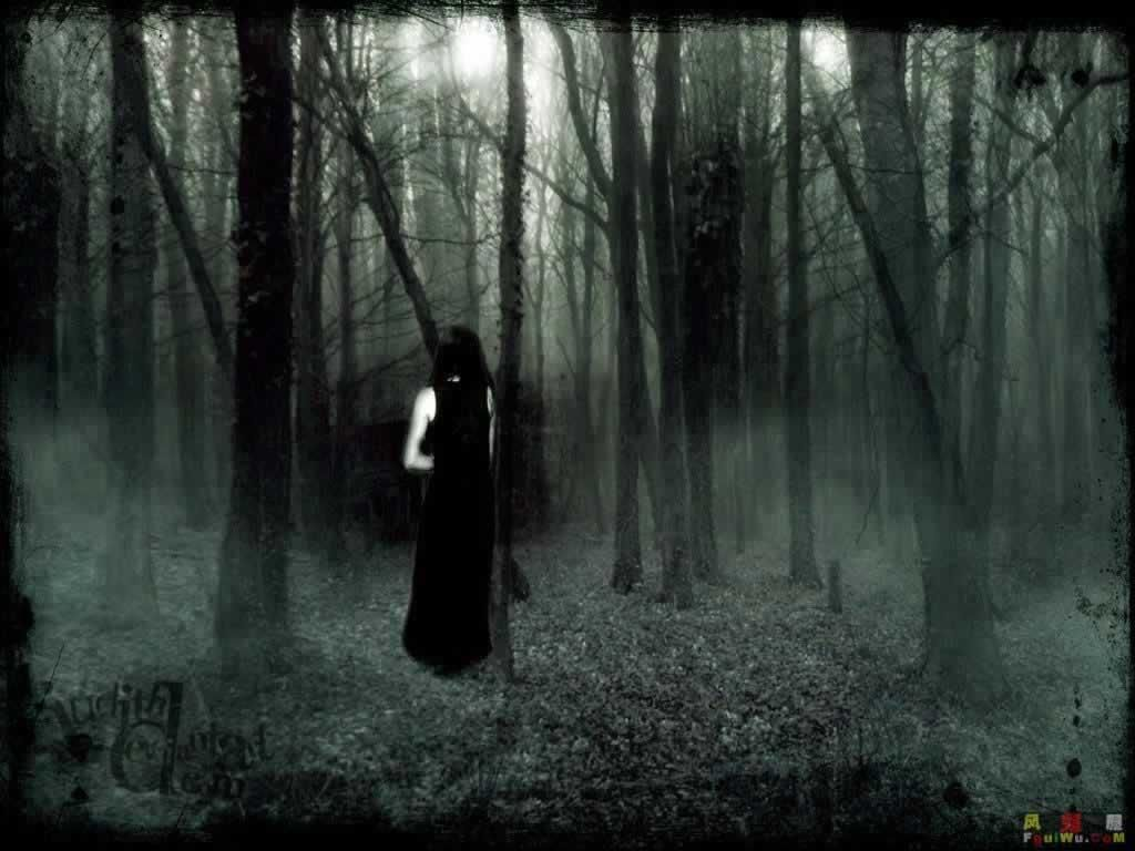 The Woods Panaecea Gothic Wallpaper Gothic Background Dark Gothic Art Dark gothic creepy wallpaper
