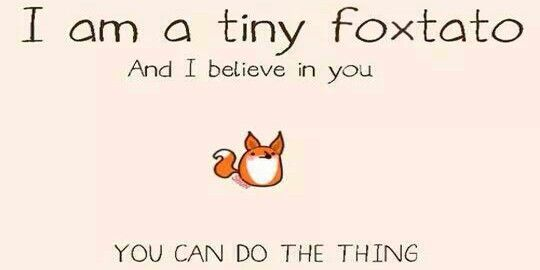 71954ff61eda89982f55975039f8c365 i am a tiny foxtato, and i believe in you! you can do the thing