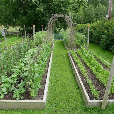 ooooooooo!! We could do this on the other side of your mom's! The veggie- and cut flower garden