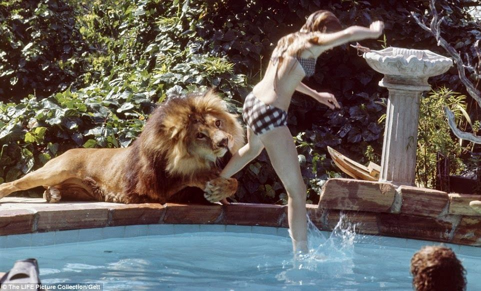 These photos of a teenager and her pet lion will shock you! - Future Of Dubai