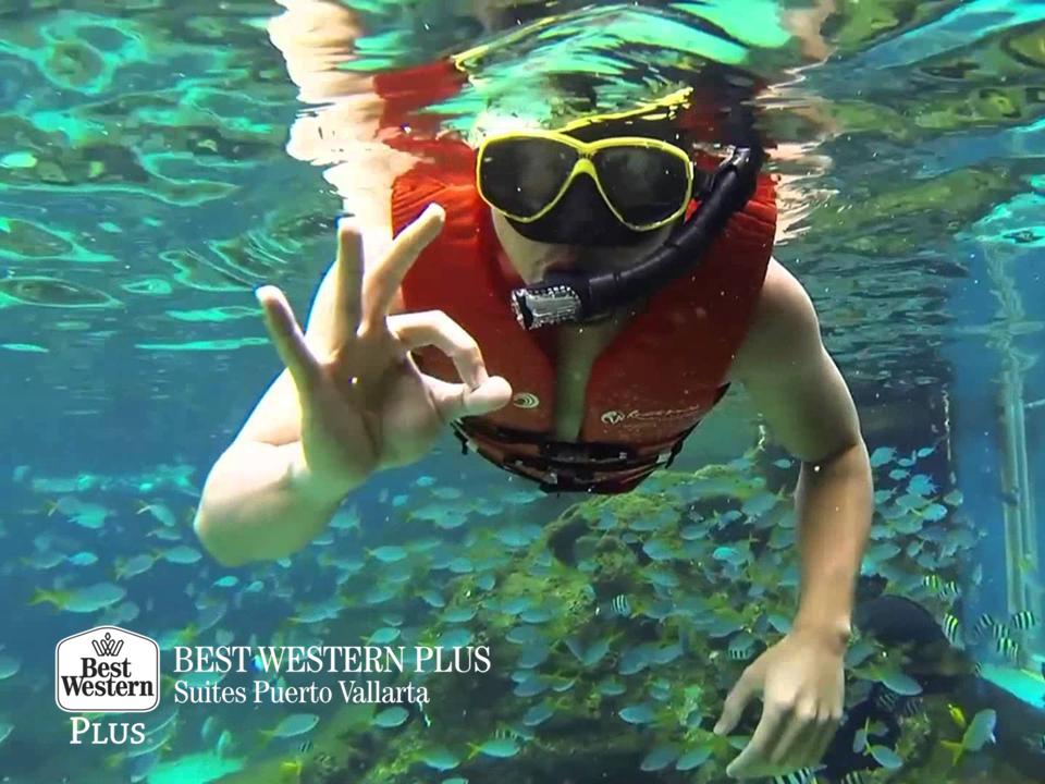 EL MEJOR HOTEL DE PUERTO VALLARTA. En Best Western Plus Suites Puerto Vallarta, le esperamos en su próxima visita a este bello lugar, para agregar más momentos emocionantes y llenos de adrenalina, ya sea con la práctica del kayak o el snorkeling, el cual le permitirá contemplar la belleza del fondo del mar. #bestwesternvallarta