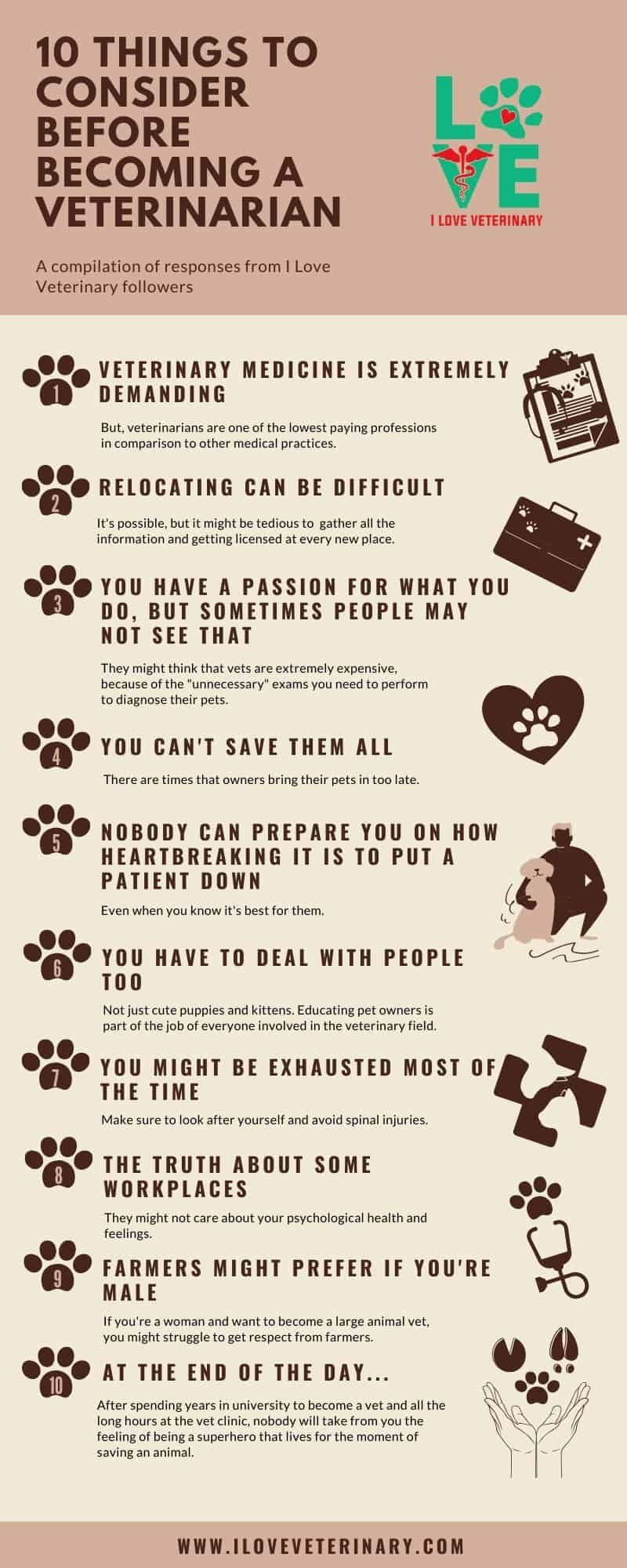 10 Things To Consider Before Becoming A Veterinarian I Love Veterinary In 2020 Becoming A Veterinarian Veterinarian Veterinary