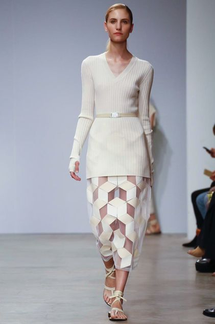 Allude Ready To Wear Spring Summer 2015 Paris