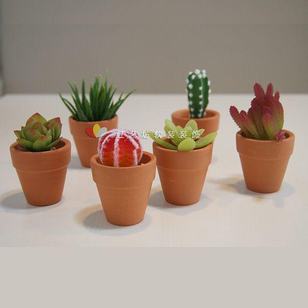 mini bonsai tropical plants mini cactus series gadgetries. Black Bedroom Furniture Sets. Home Design Ideas