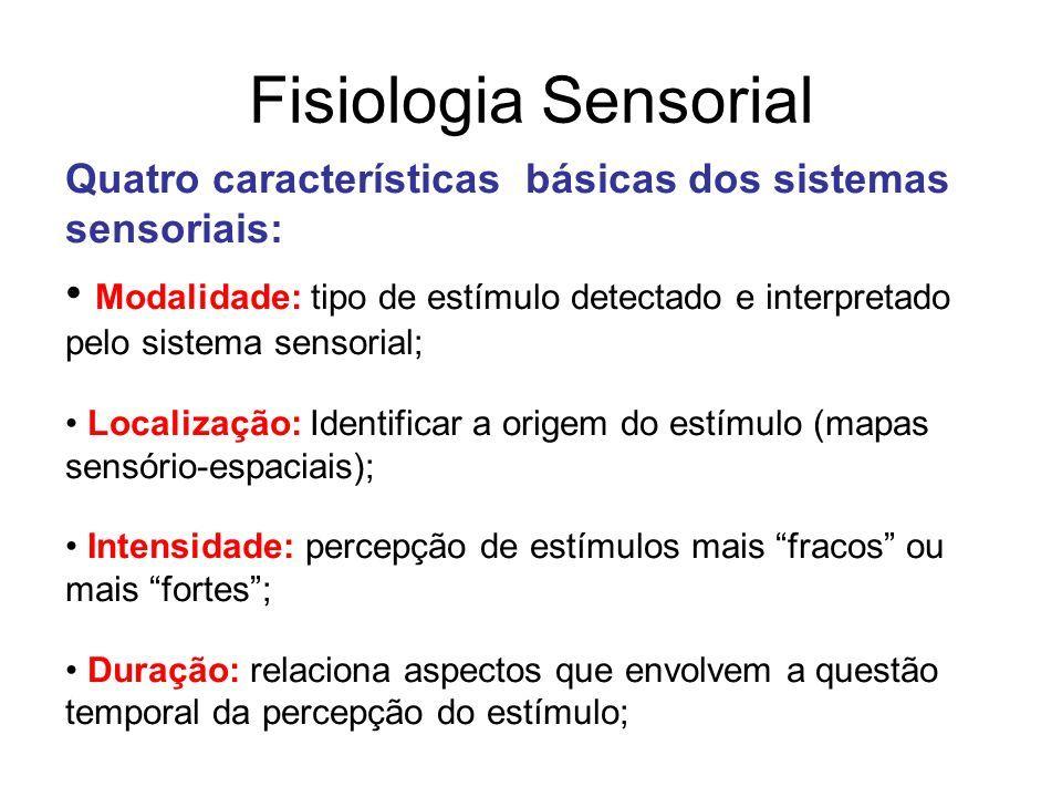Resultado De Imagem Para Fisiologia Sensorial Fisiologia