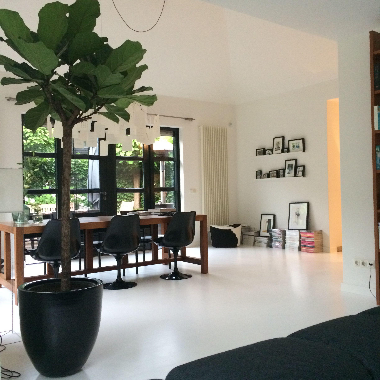 Tulip chair, Saarinen, Knoll