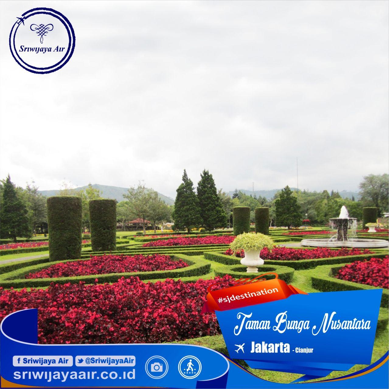 Tahukah Anda Di Puncak Terdapat Taman Bunga Yang Sangat Indah Sekali Dinamakan Taman Bunga Nusantara Diperkirakan Terdapat Sekitar 2 Taman Bunga Taman Bunga