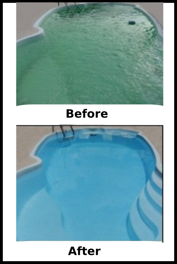 Having Swimming Pool Water Problems Find Out How Plants Can Help Prevent Pool Water Problems Pool Cloudy Pool Water Swimming Pool Water