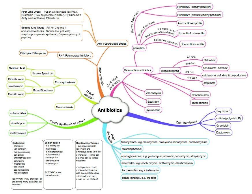 Antibiotic    map   Nurse notes   Pharmacology nursing  Family nurse practitioner  Medical students