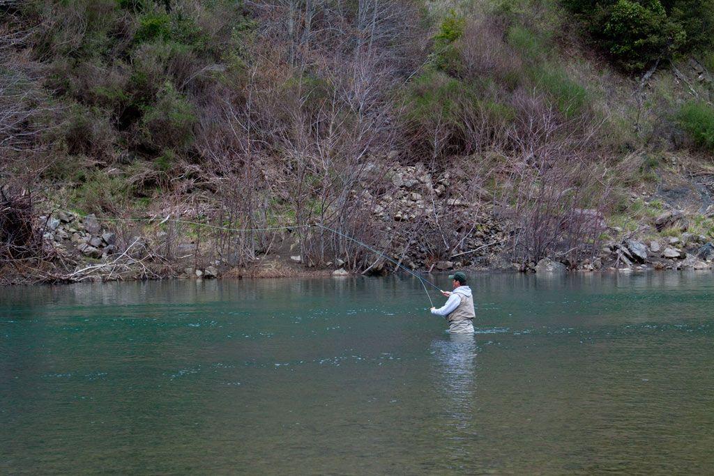 Flyfishing For Steelhead Eel River Mendocino County Northern California Photog Bird Photography Backyard Birds