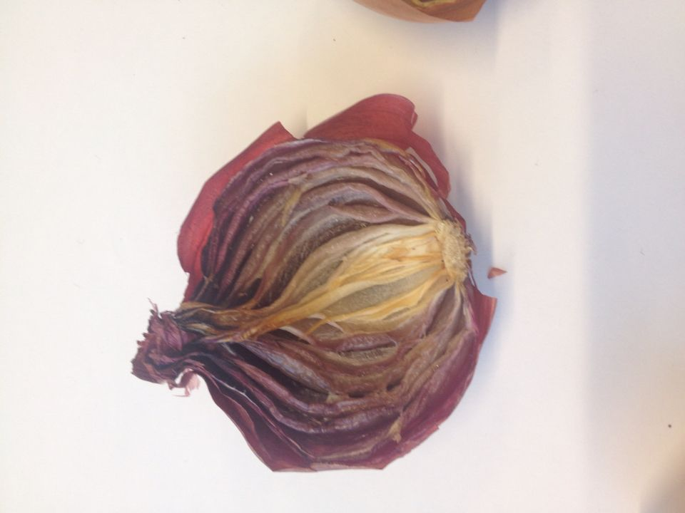 Half of dried red onion