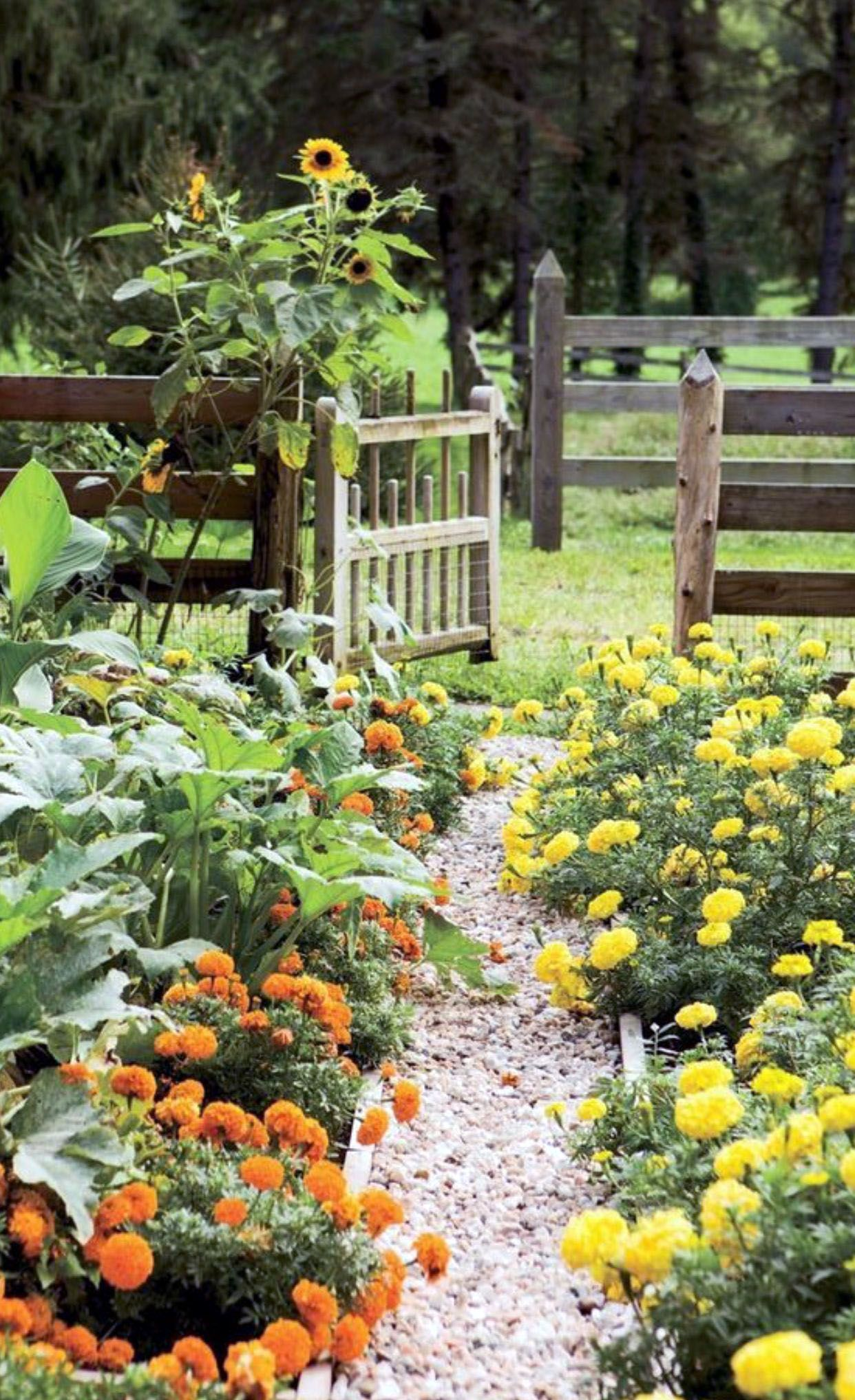Outstanding flower garden plans zone 9 that will blow your ...