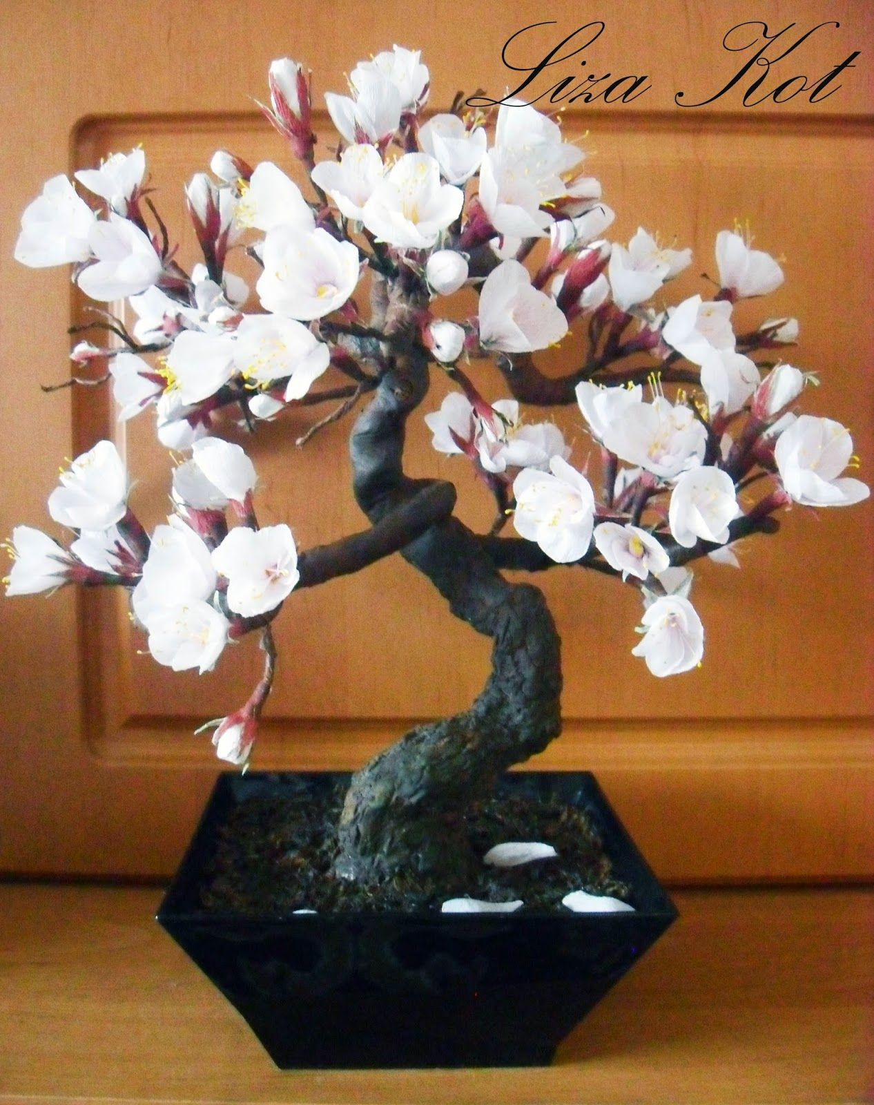Деревья сакура своими руками фото фото 363