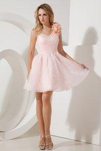 Light Pink Short Prom Dresses Photo Album - Reikian