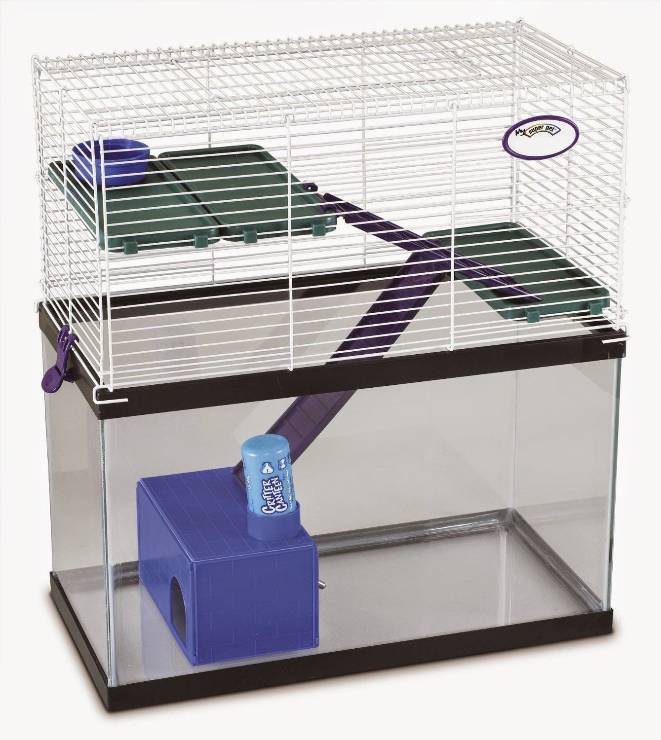 Pet Rat Glass Cage | Glass cages, Rats and Pet products