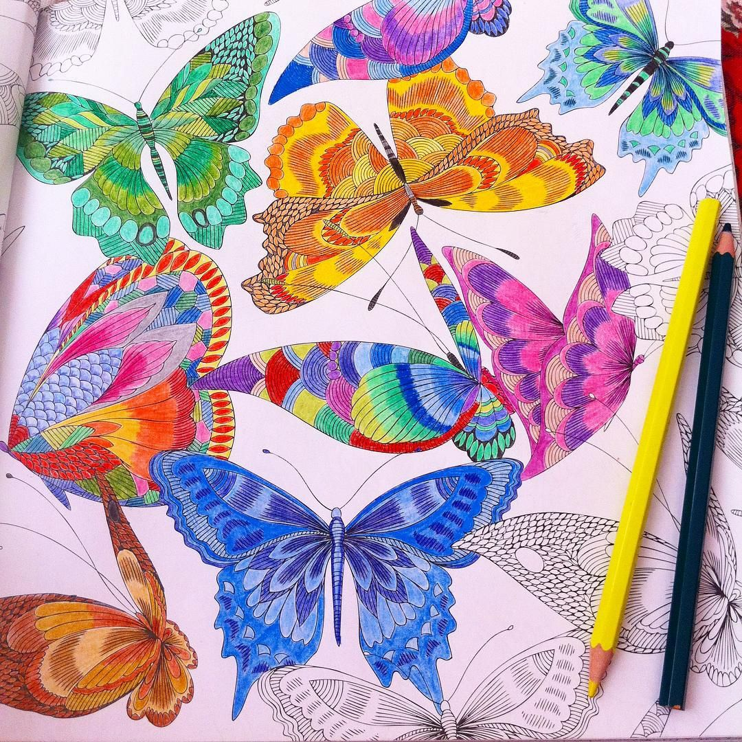 Coloring ideas butterflies