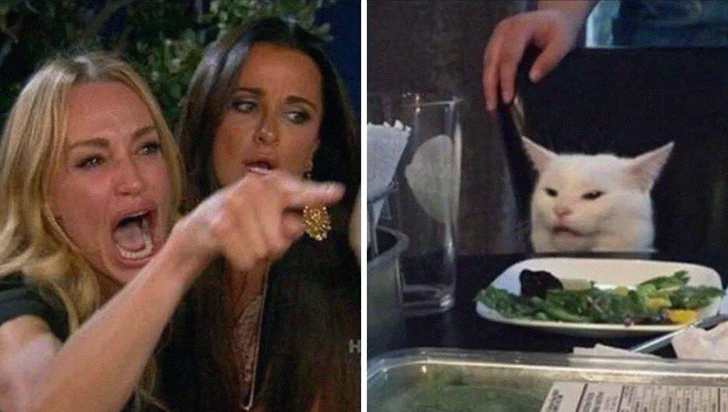 هل رأيت أفضل من المزيج الذي يجمع بين القطط والميمز في عالم الإنترنت انتشرت العديد من ميمز القطط على مواقع التواصل الاجتماعي حتى أصب Cat Memes Create Memes Cats