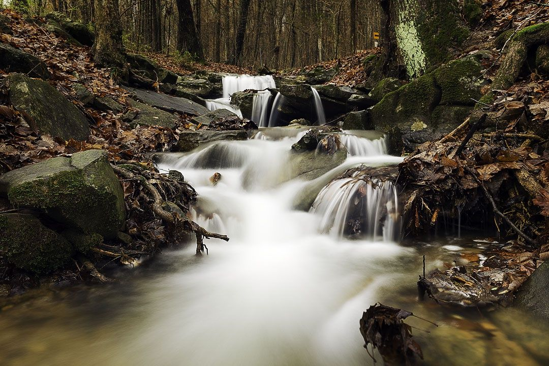 Photo fall by Malik Mustafa  on 500px