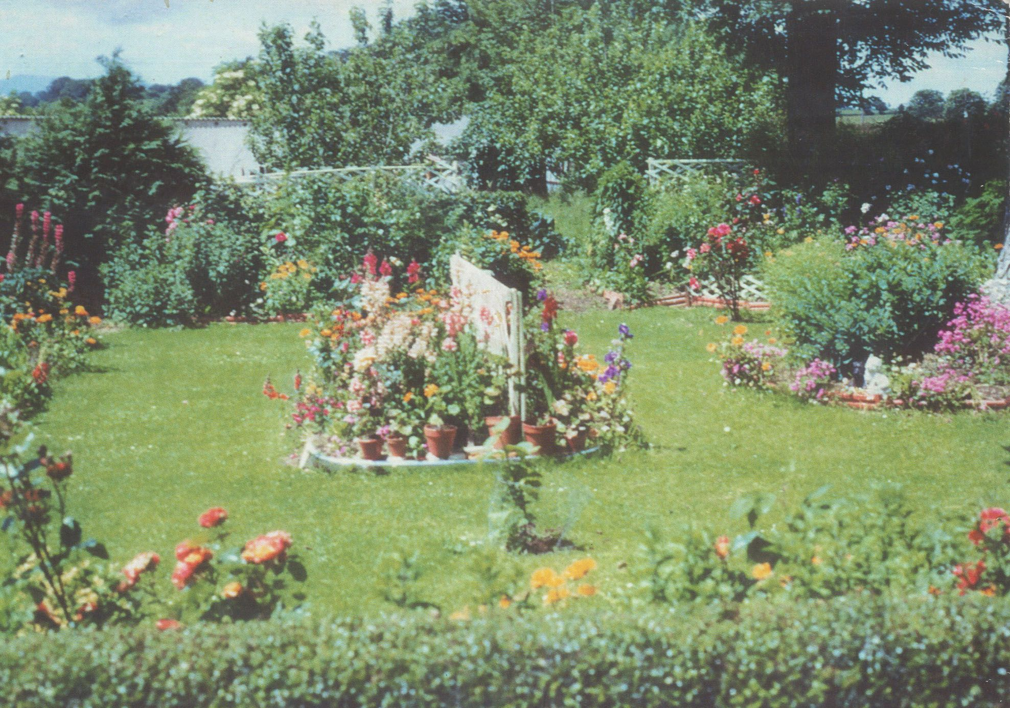 My Granny's stunning gardening which she was famous for.I love the colours in this photo.