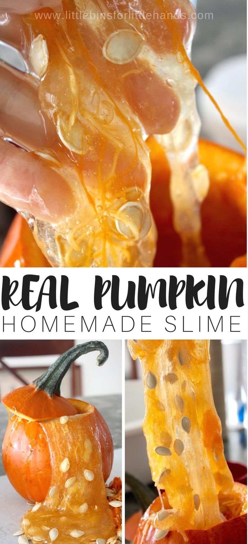 How to Make Pumpkin Slime with Real Pumpkin | Work | Science
