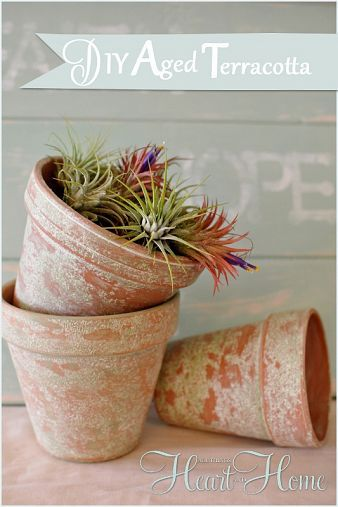 Aging Terra Cotta Pots The Easy Way Aging Terra Cotta Pots Terracotta Pots Terracotta Flower Pots