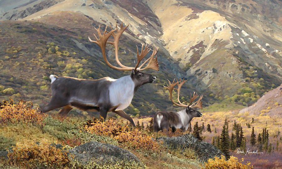 North American Wildlife Paintings Wildlife Art North