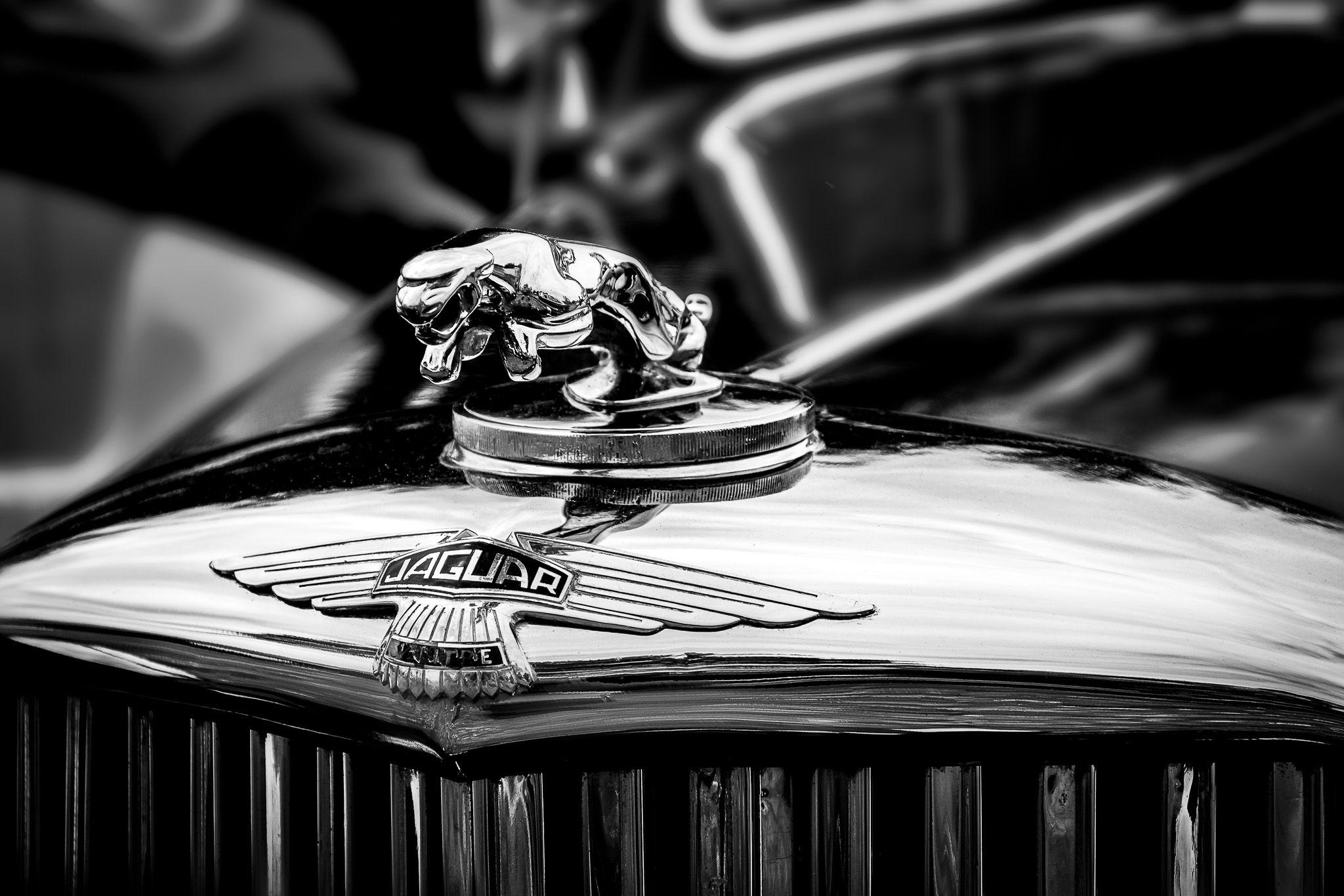 Jaguar Car Hood Ornaments Jaguar Hood Ornament Jaguar Car