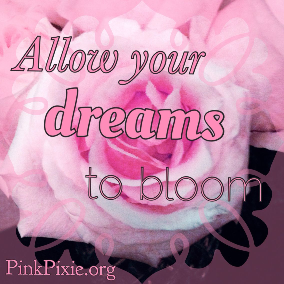 Dream big and watch them blossom