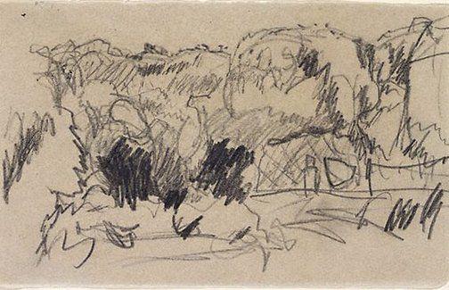 Landscape 1867 1947 By Pierre Bonnard Pencil Drawing Art Gallery Nsw Pierre Bonnard Art Pencil Drawings Of Nature