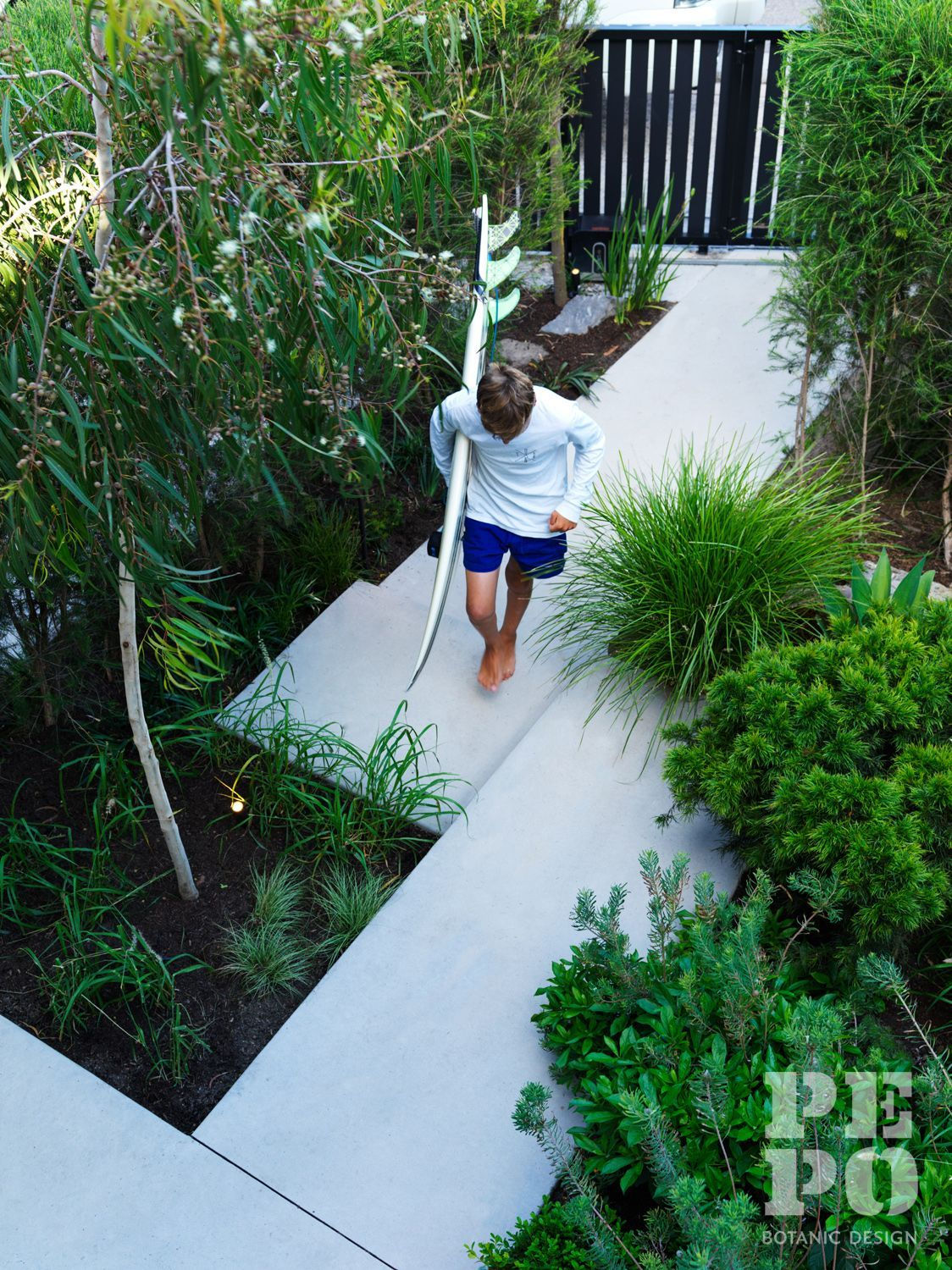 Australian Coastal Garden In The Eastern Suburbs Of Sydney Australia If You Want To M In 2020 Front Garden Landscape Coastal Gardens Front Yard Landscaping Design