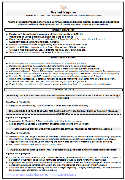 Resume Sample for Marketing & Market Research (1) | Career ...
