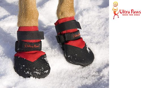 """Dog owners and pups will love this deal: """"Snow & Go Boots"""" as featured on doggyloot.com"""
