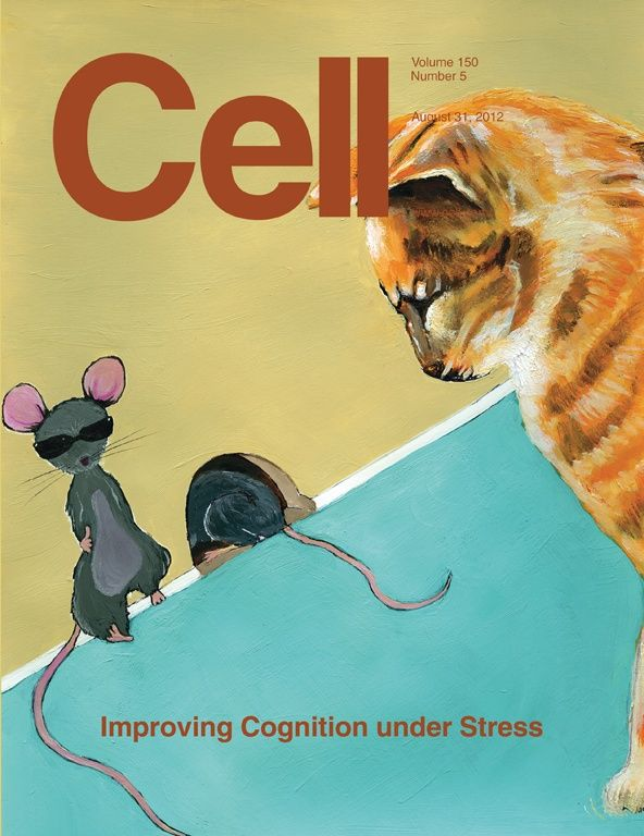 cell magazine front cover 31st august magazine covers pinterest