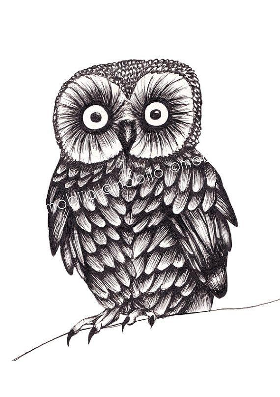 Baby owl drawing-print...