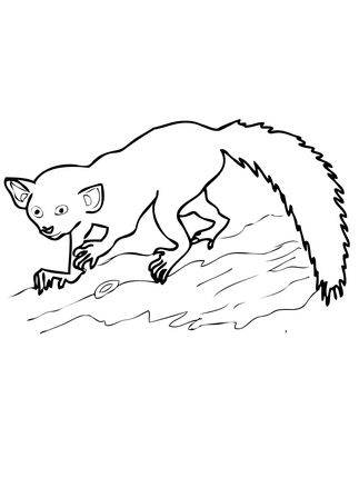 Coloring pages. Mother lemur sits with ... | Stock vector | Colourbox | 430x323