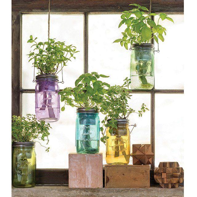 Mason Jar Indoor Herb Garden Hydroponic Grow Kit With 400 x 300