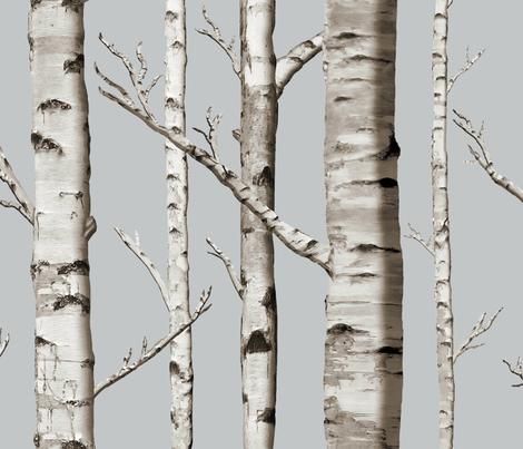 Colorful Fabrics Digitally Printed By Spoonflower Birch Grove In Whitestone Birch Tree Wallpaper Tree Wallpaper Bedroom Birch Tree Mural