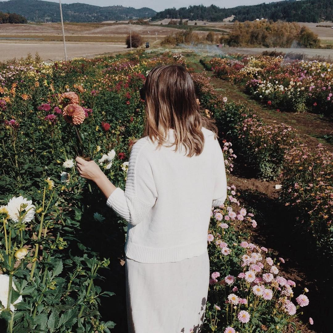 « spent the day picking flowers and tasting wine with @pseudo_context. It was a good day! »