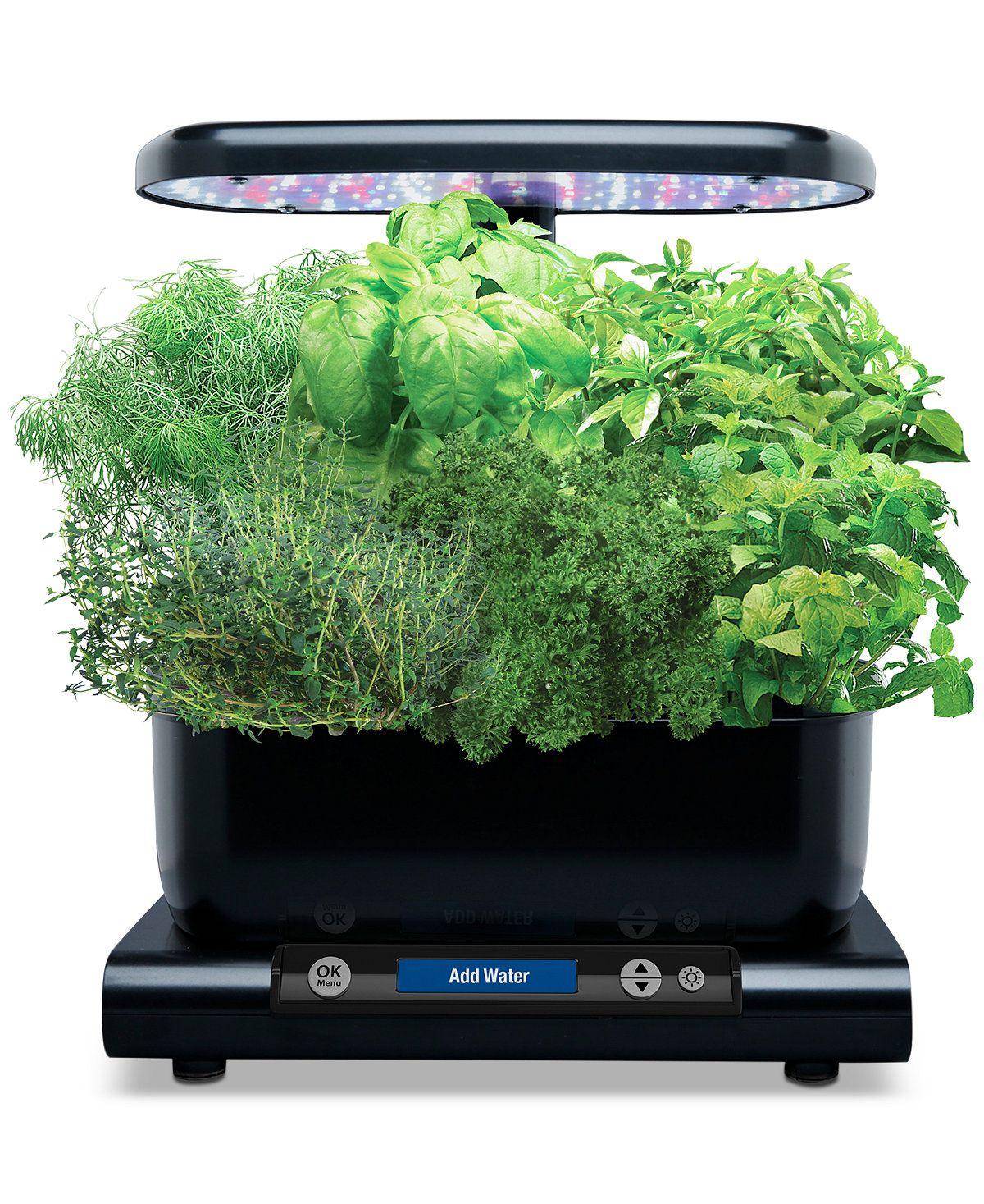 Aerogarden™ Harvest 6 Pod Smart Countertop Garden 400 x 300