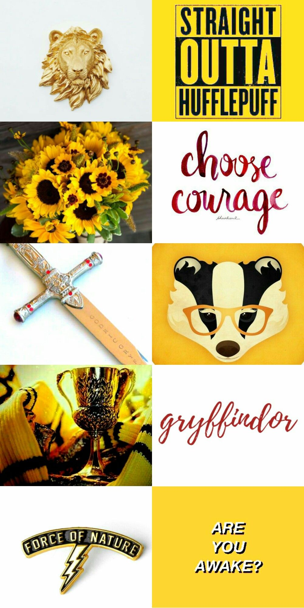 Everyone Is A Little Gryffindor Harry Potter Universal Harry Potter Fantastic Beasts Hufflepuff