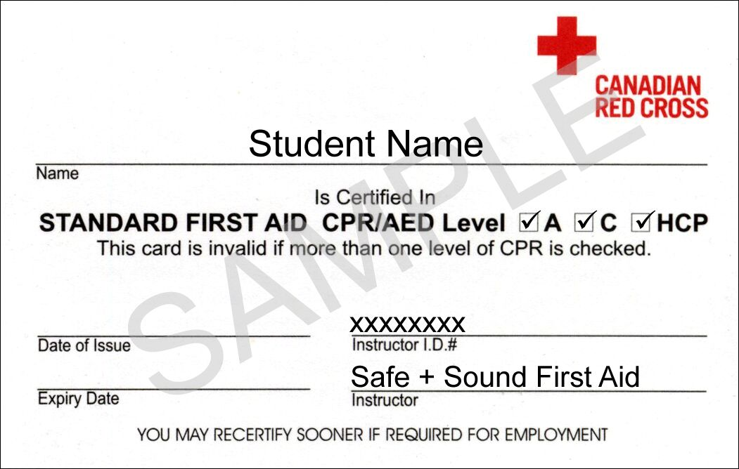 First Aid Certification Sample First Aid Cpr First Aid Classes Standard First Aid