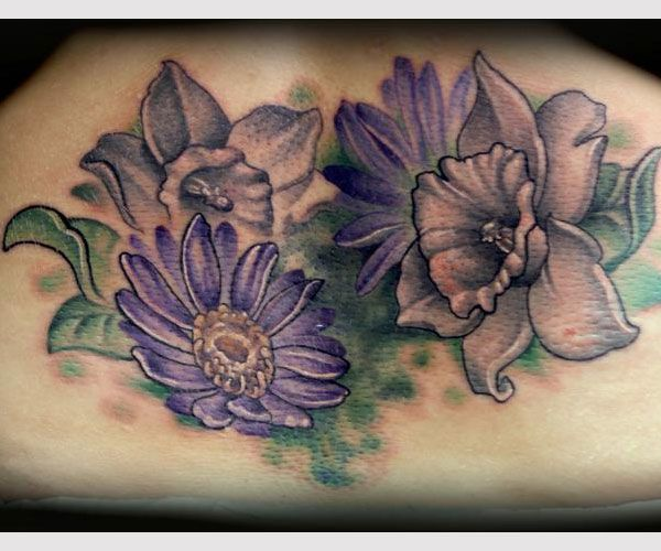 Best 25+ Aster Tattoo Ideas On Pinterest