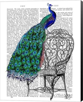 Peacock On Chair By Fab Funky Canvas Art - Multi | Animal ...