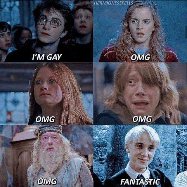 Terrible Fandom Memes Harry Potter Feels Harry Potter Images Harry Potter Mems