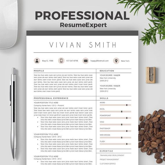 Clean Resume Template Word Professional Resume by ResumeExpert - it professional resume template word